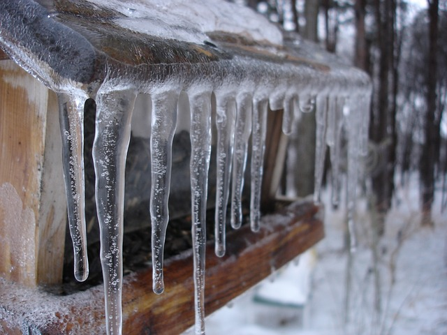 Icicles  on a bird house